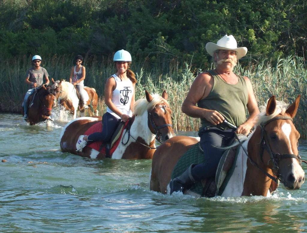 alimini-cavalli